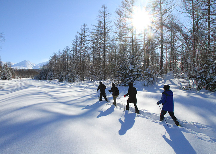冬の体験プラン