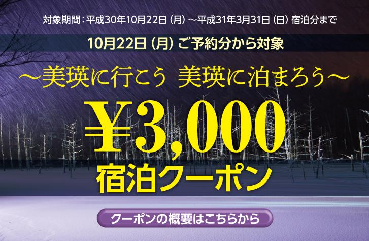 美瑛に行こう 美瑛に泊まろう 3,000円 宿泊クーポン