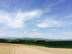 丘の風景5月下旬