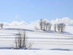 丘模様(融雪剤散布)3月上旬